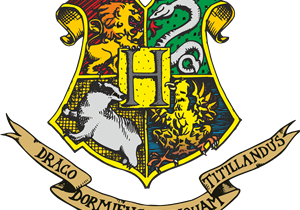 Harry Potter Beaver Camp